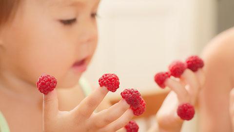 Finger Food yang Sesuai untuk Si Kecil