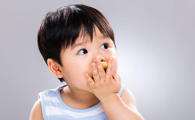 Makanan Padat Bayi 9-12 Bulan